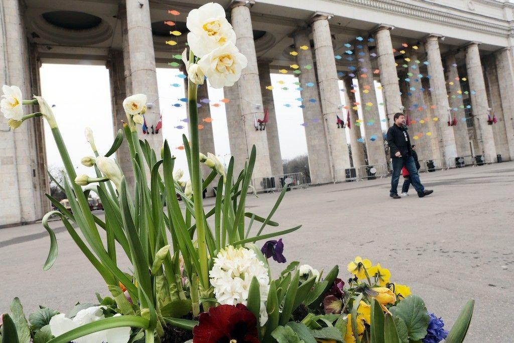 Москва отметит Международный день парков 16 мая