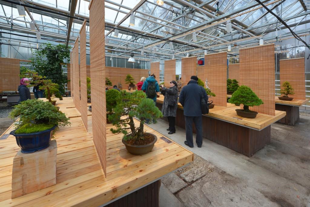 Ботанический сад победил в ландшафтном конкурсе