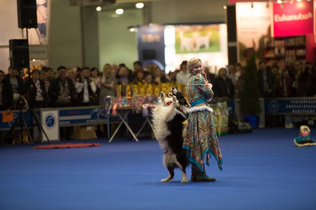 Столица впервые примет чемпионат мира по танцам с собаками