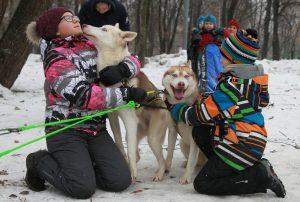 11 декабря 2016 года. Екатерина Карпова и ее собака - хаски Алсу - многократные победительницы гонок по ездовому спорту
