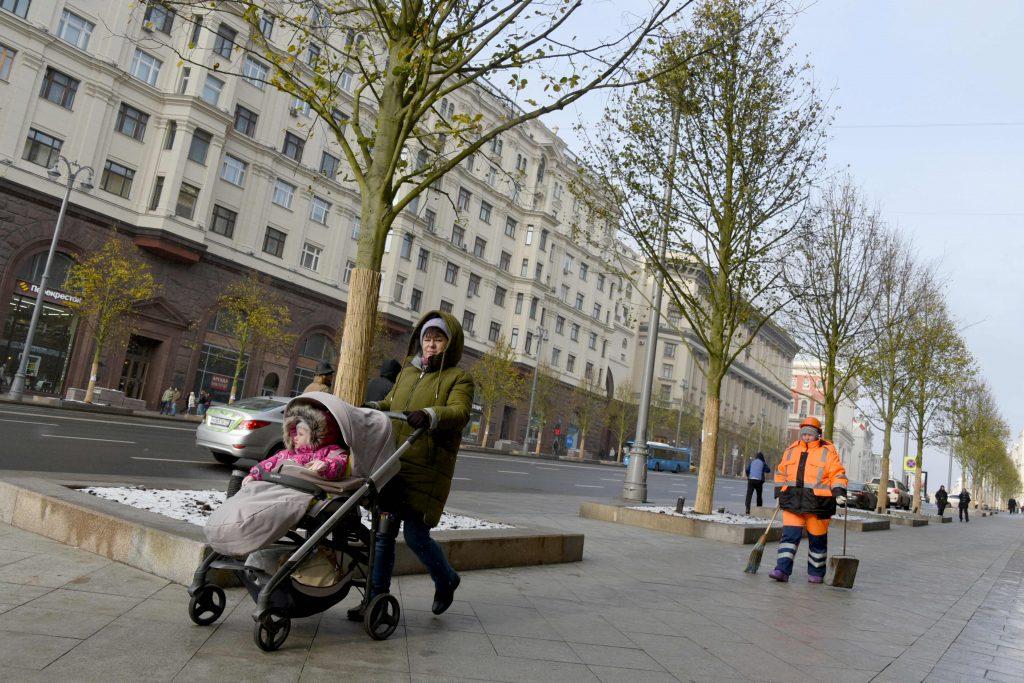 Деревья вернули на главную улицу столицы