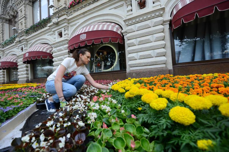 Свыше 370 тысяч цветов украсят здание ГУМа в рамках Фестиваля цветов