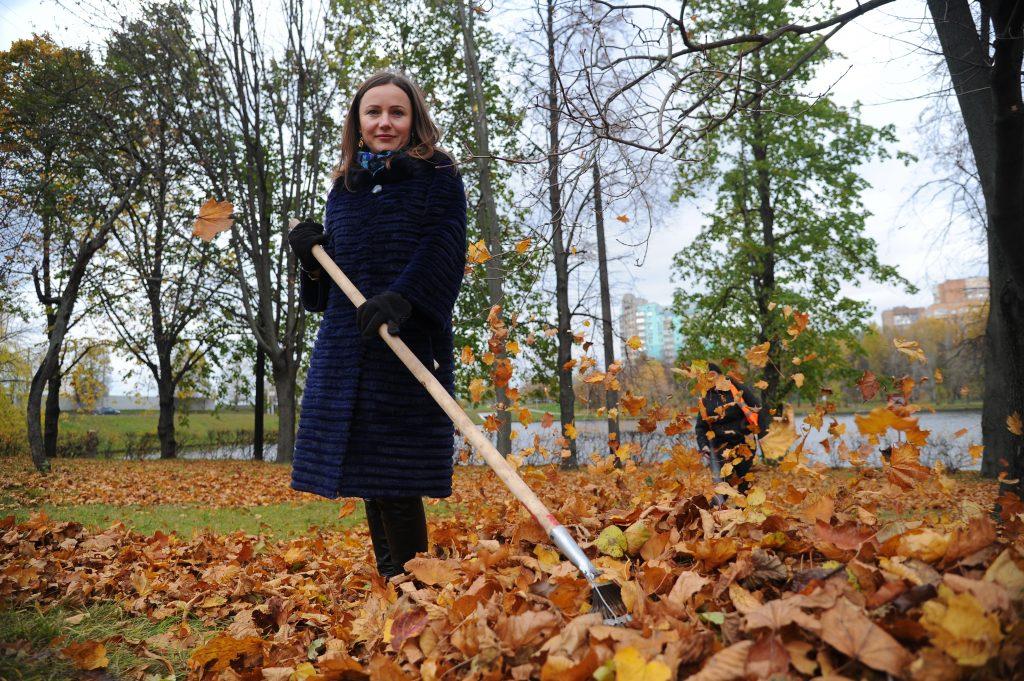 Почти 200 дворов Тверского района ежедневно очищаются от листвы