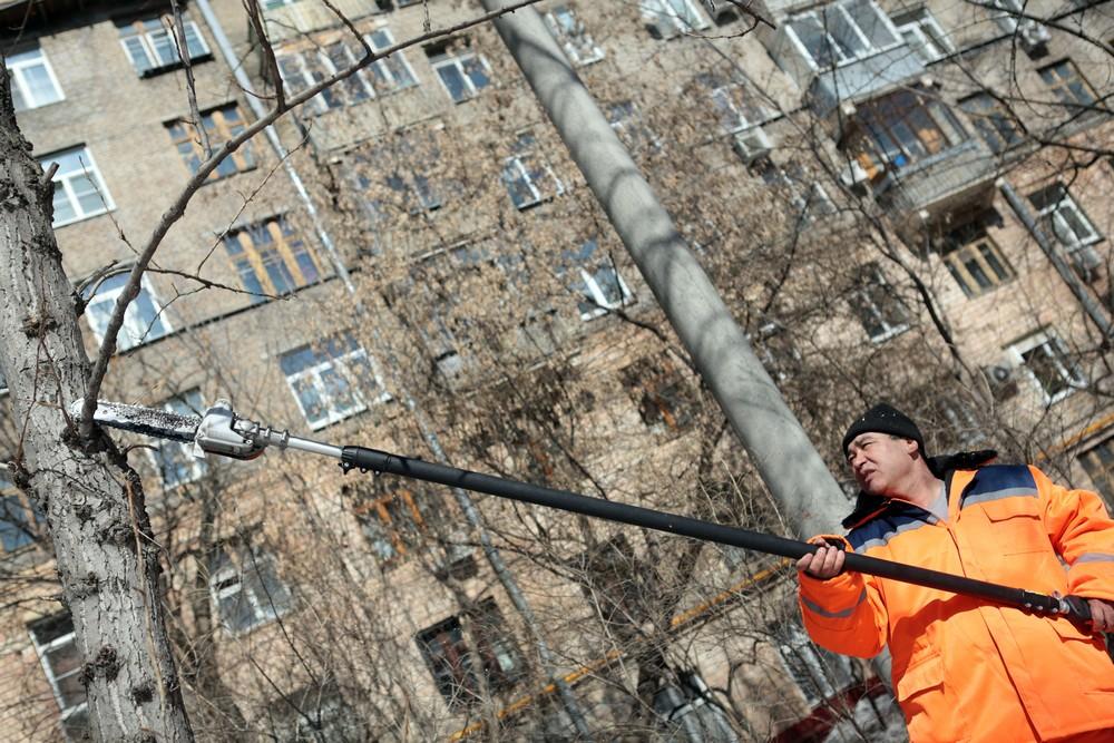 Дворы Якиманки обустроили за счет средств от платных парковок