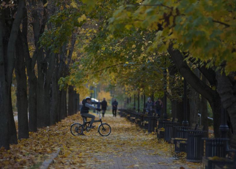 Парк «Новослободский» благоустроят с учетом мнения жителей
