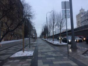 На зиму деревья утеплили, чтобы весной порадовать москвичей свежей зеленью. Фото: Мария Иванова, «Вечерняя Москва»