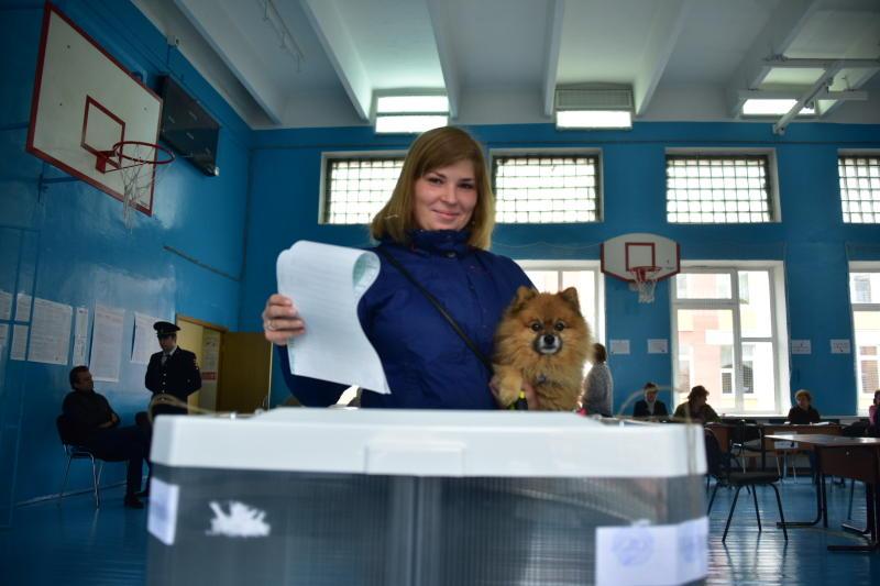 Порядка миллиона человек подали заявки на участие в выборах президента России