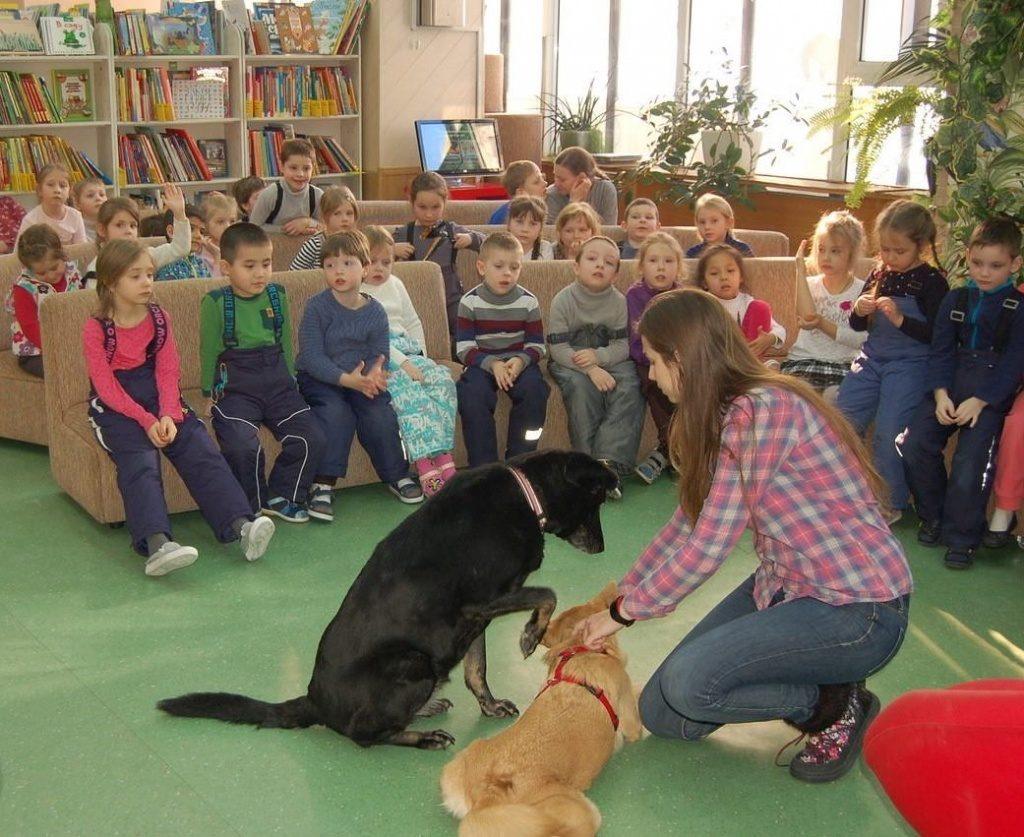 Лекцию о собаках-космонавтах прочитают в библиотеке имени Аркадия Гайдара
