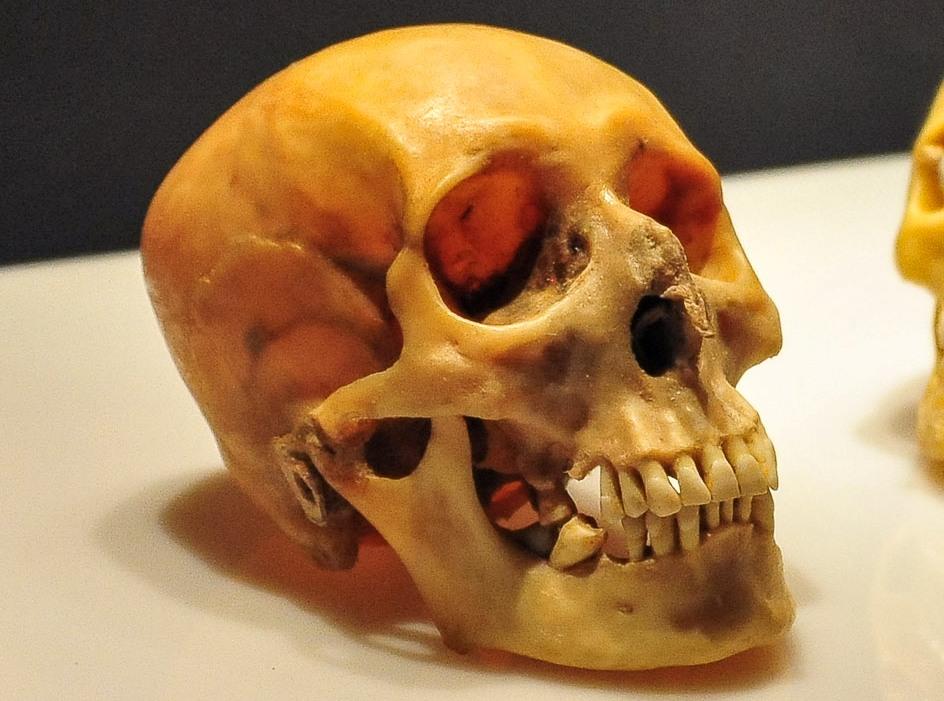 Скелет нашли в заброшенном доме на Зубовском бульваре, назначена экспертиза