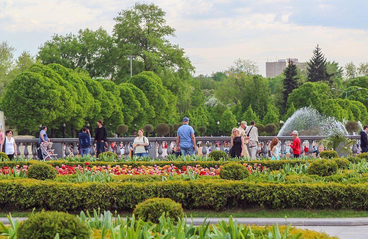 Автомобиль из конструктора смогут увидеть горожане в Парке Горького. Фото: сайт мэра Москвы