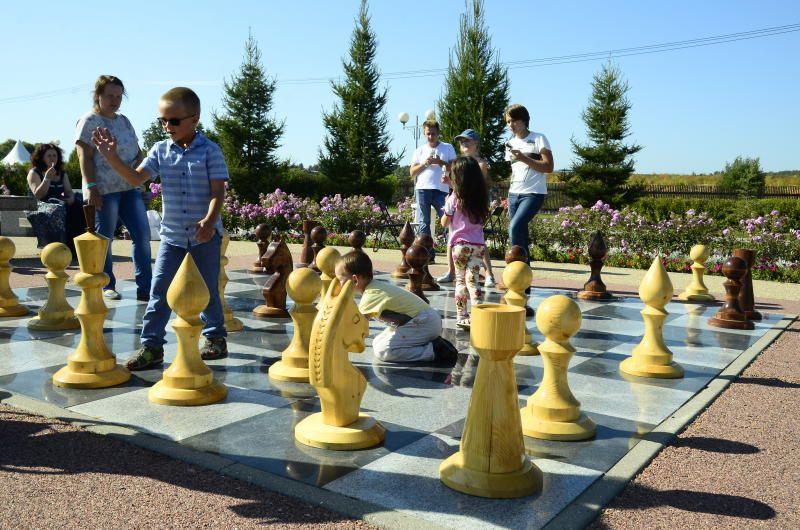 Шахматные игры пройдут в павильонах ВДНХ - «Земледелие», «Рабочий и колхозница». Фото: Анна Быкова