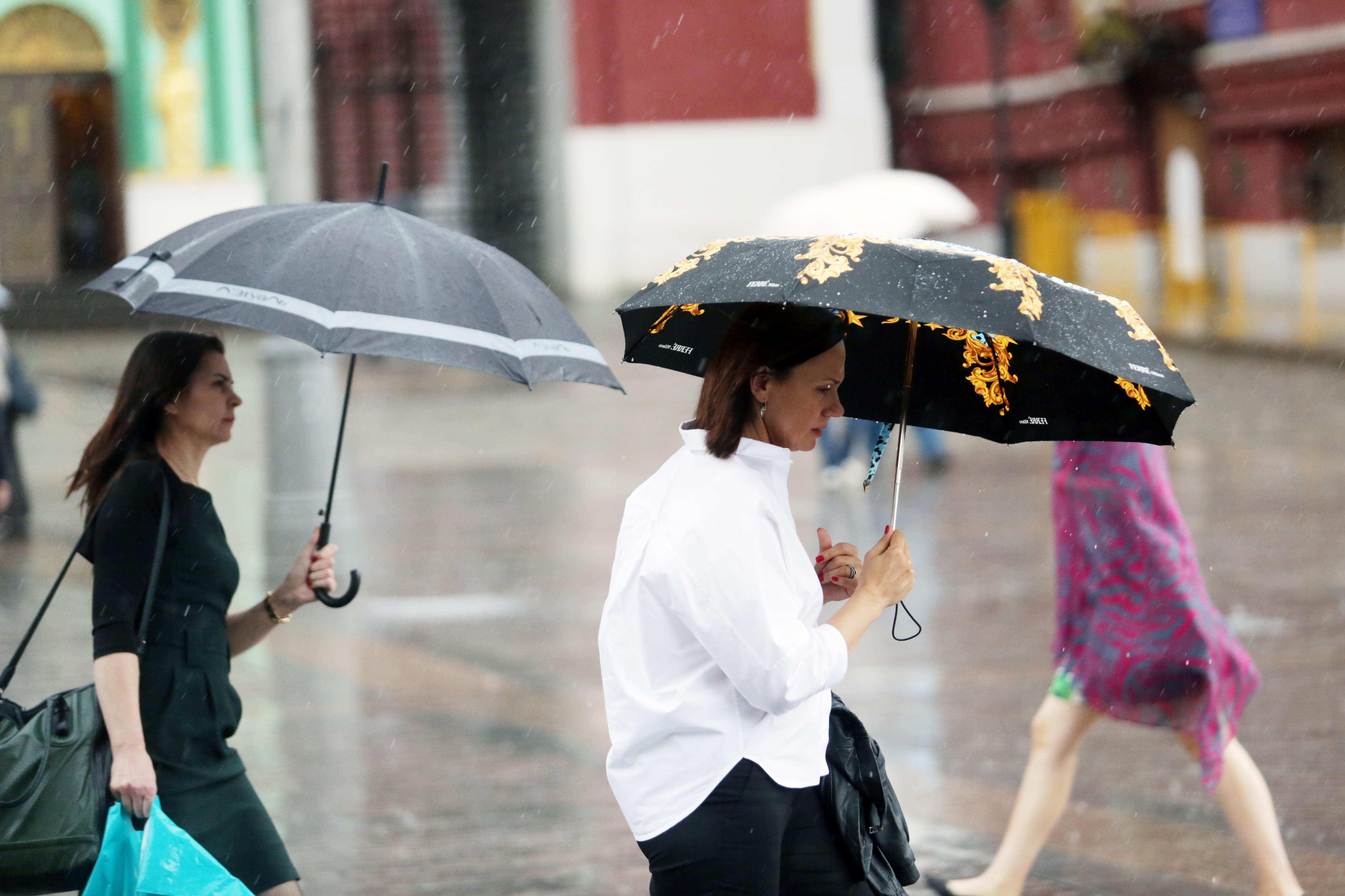 Не стоит забывать про зонт. Фото: Анна Иванцова, «ВечерняяМосква»