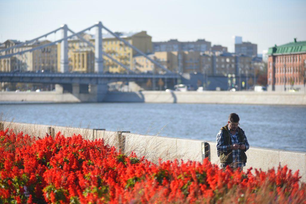 Более 100 видов многолетних цветов высадили в центре Москвы с начала года.