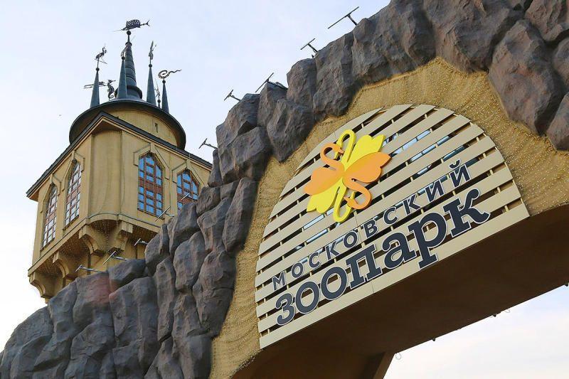 Более пяти тысяч человек отметили День города в Московском зоопарке