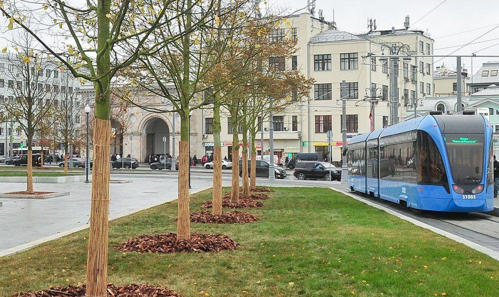 Несколько улиц в районе Замоскворечье озеленят