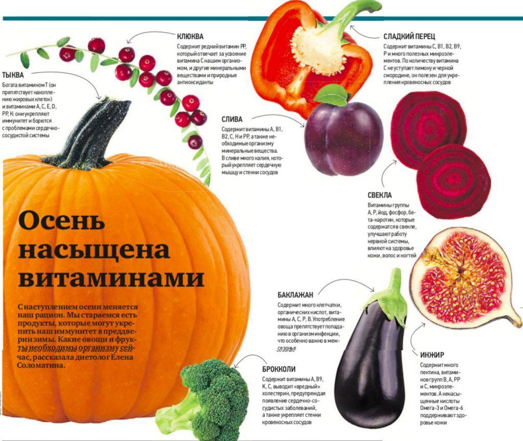 Осень насыщена витаминами