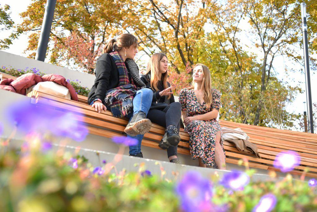 Благоустройство расширит яблоневый сад на западе Москвы