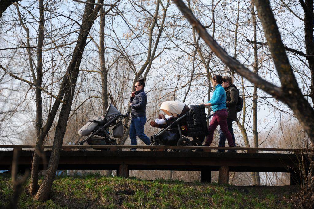 Более 90 процентов москвичей одобрили благоустройство парков