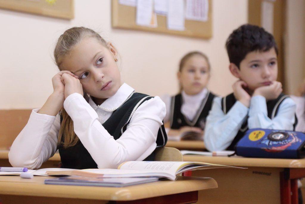 На высшем уровне: как столичное образование вышло в мировые лидеры