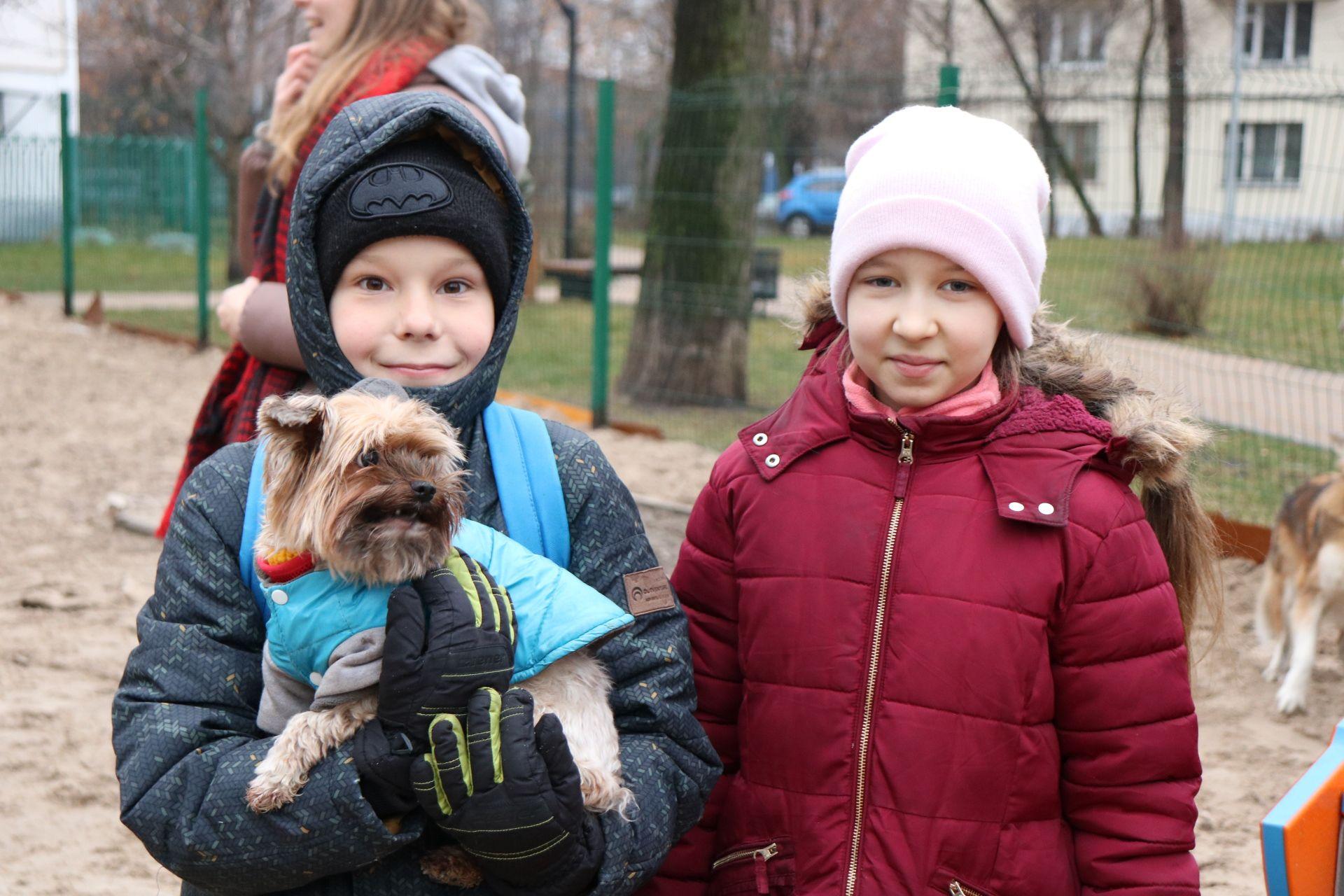 Мастер-класс по дрессировке собак провели в районе Якиманка. Фото предоставлено представителями Молодежной палаты