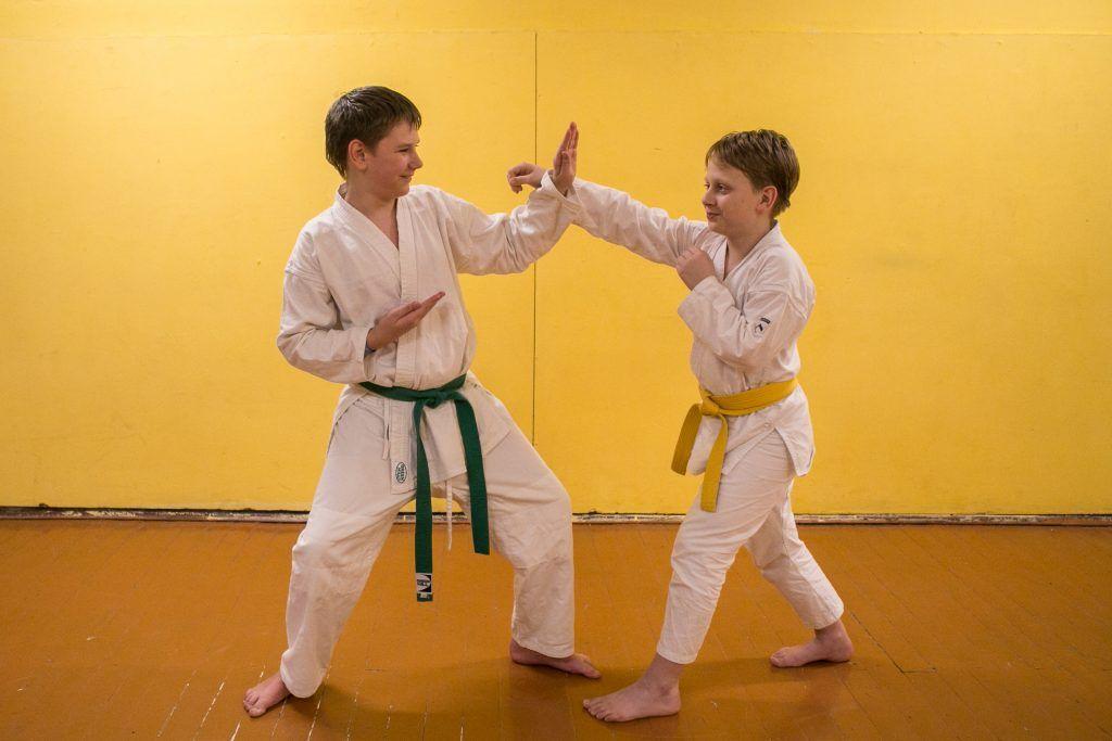 Изучение боевого искусства в игровой форме