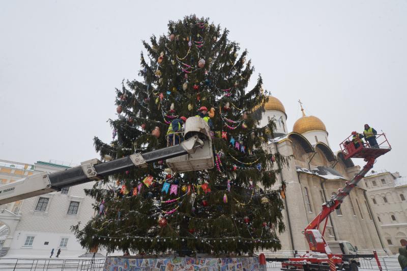 Главная Новогодняя ель украсит Соборную площадь Кремля. Фото: Александр Казаков, «Вечерняя Москва»