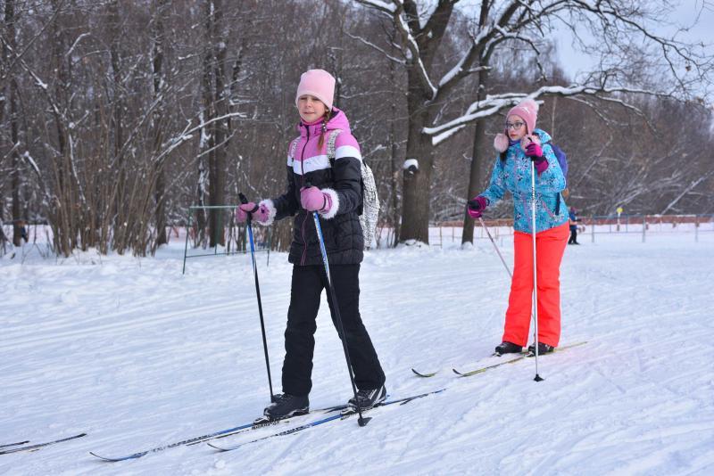 Прогулка на лыжах. Фото: Пелагия Замятина, «Вечерняя Москва»