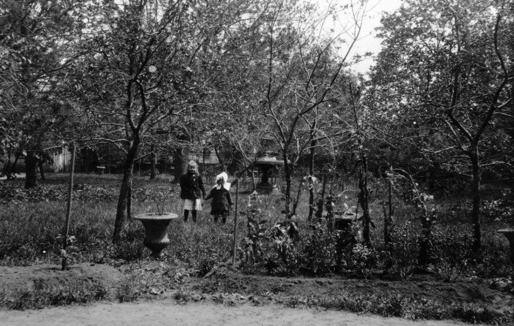 Сад во дворе дома, 1910 год. Раньше там выращивали редкие растения. На фото представители семьи Мухиных — последних частных владельцев дома. Фото предоставлено сотрудниками библиотеки