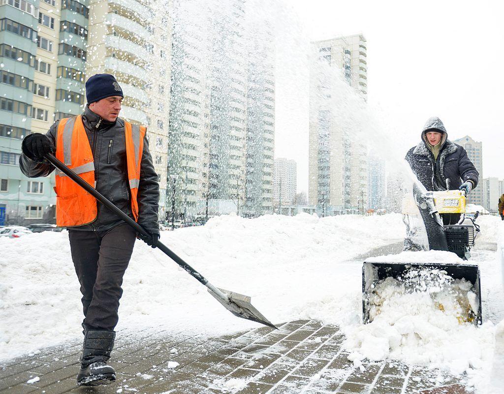 Столичные коммунальные службы приступили к уборке снега