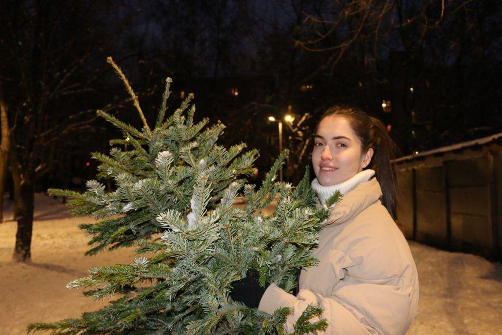 Корреспондент сайта газеты «Москва.Центр» сдает ель на переработку