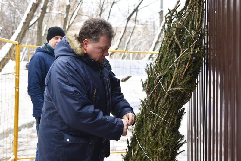 Более 60 новогодних деревьев сдали в пункты приема в Таганском районе. Фото: Пелагия Замятина, «Вечерняя Москва»