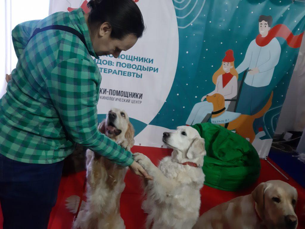 Кинолог Анастасия тренирует двух своих подопечных. За успешные упражнения собак угощают лакомствами. Фото: Екатерина Гринева