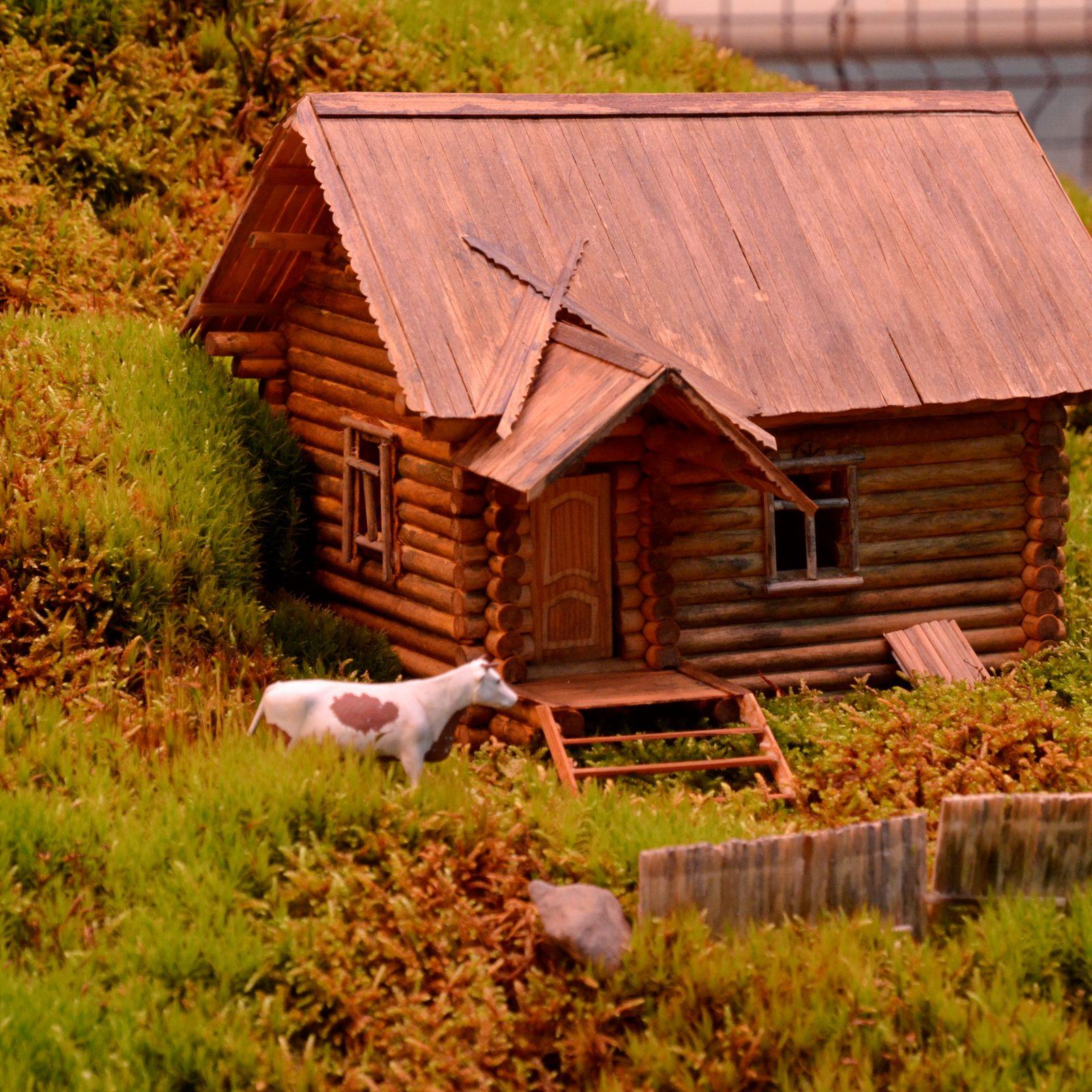 На выставке можно найти миниатюрную имитацию голландской деревни. На небольшом холме из мха установили деревянные домики. Фото: Анна Быкова