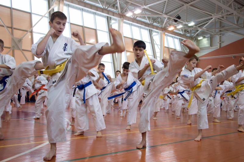Сотрудники Плехановского университета организуют турнир по карате