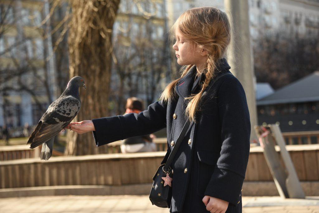 Москвичей ждет «весенняя» пятница