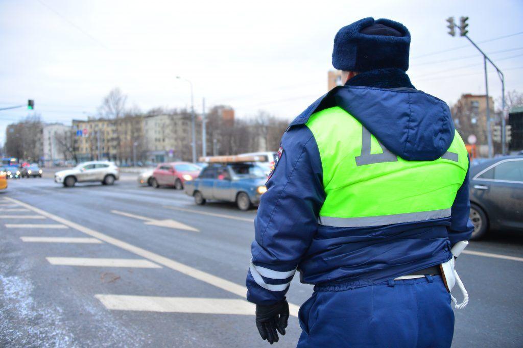 Проверку назначили после гибели водителя под упавшим деревом в Москве