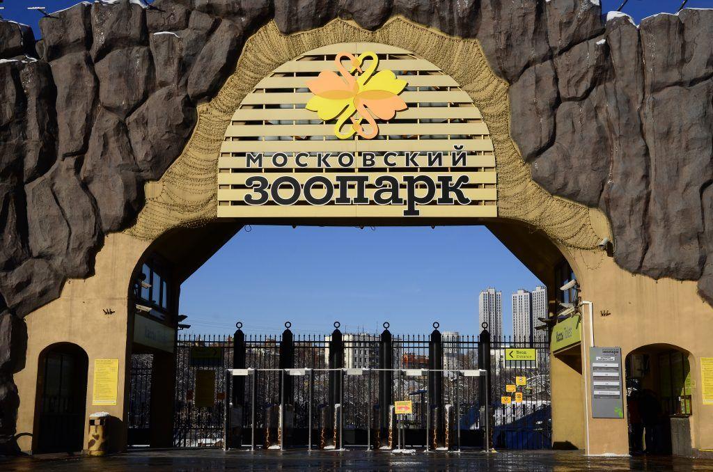 Африканские белки из Магдебурга прибыли в Московский зоопарк