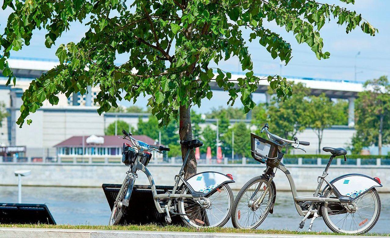 Депутат Мосгордумы Артемьев: Велоинфраструктура города должна быть удобной для жителей. Фото: сайт мэра Москвы