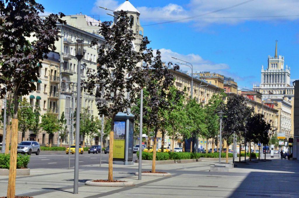Деревья привели в порядоквБольшом Сухаревском и других переулках Мещанского района