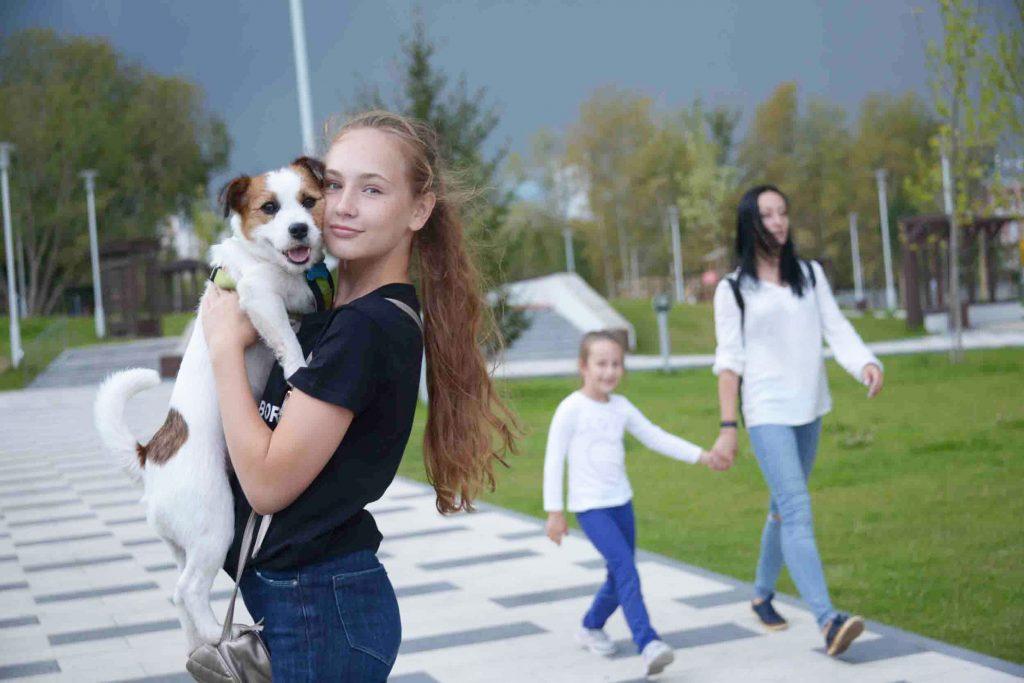 Порядка 1400 домашних питомцев забрали из приютов Москвы с начала 2020 года. Фото: Наталья Феоктистова, «Вечерняя Москва»