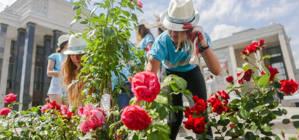 Сады мира: москвичей пригласили на лекцию в библиотеку имени Ивана Тургенева