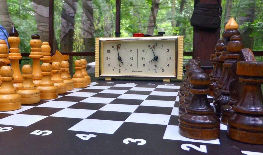 Шах и мат: сентябрьский Кубок Центрального округа по шахматам проведут в Тверском районе