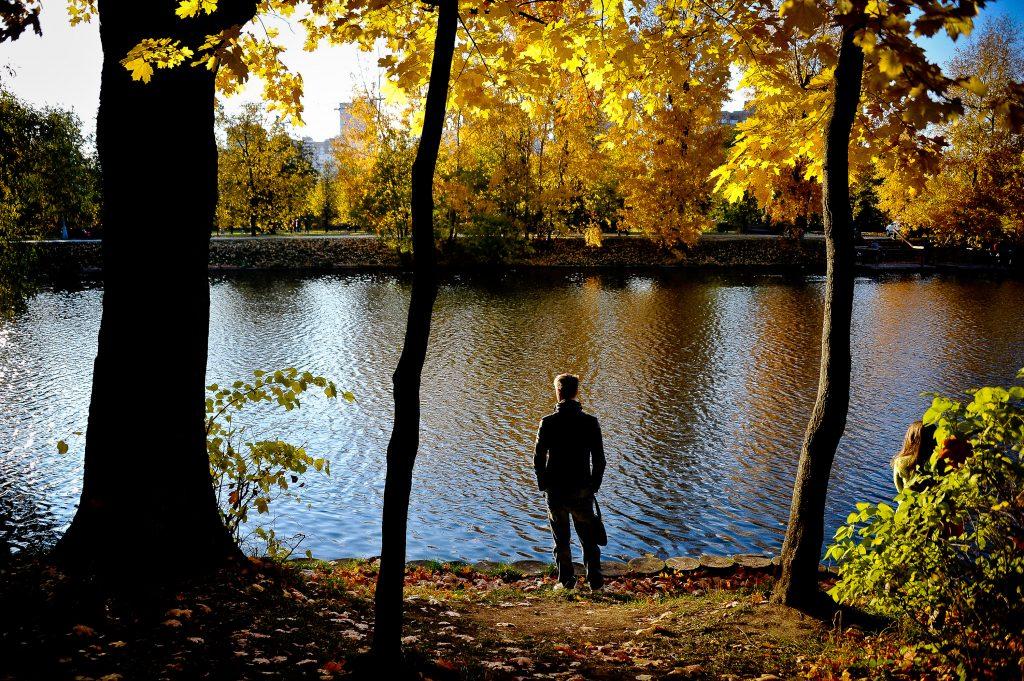 Среда может стать последним теплым днем октября в Москве