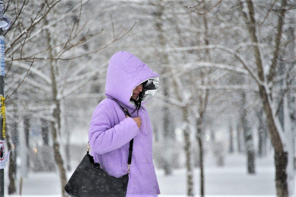 Антициклон «Сибиряк» нагрянет в Москву после «Тани»