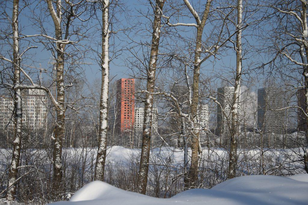 Синоптик допустил шесть сантиметров снега в Москве на выходных