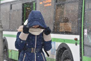 Лучше сесть на автобус вместо личного авто. Фото: Пелагия Замятина