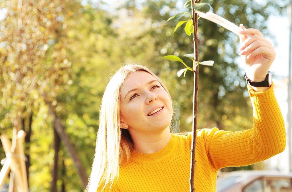 Москвичи высадили более пяти тысяч именных деревьев за осень