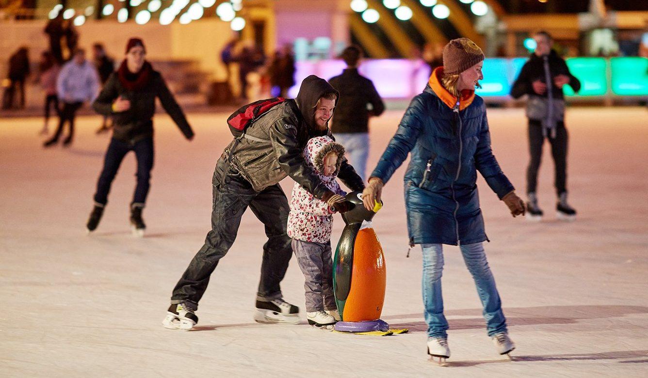 Каток в парке Делегатский с натуральным покрытием зальют в декабре. Фото: сайт мэра Москвы