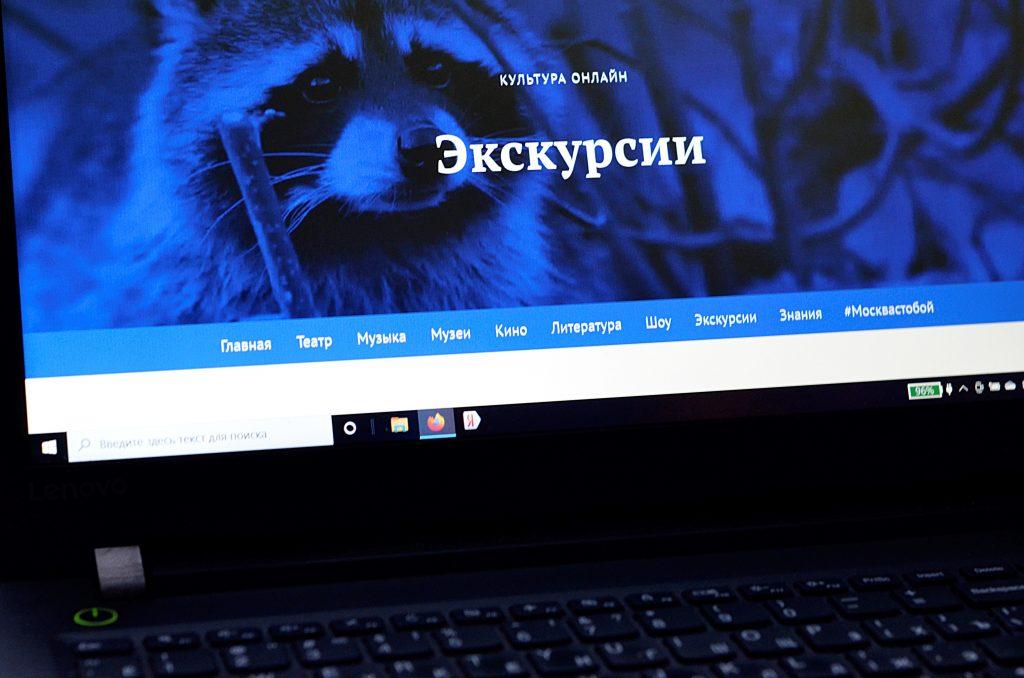 Музеи Москвы подготовили культурную онлайн-программу на новогодние каникулы