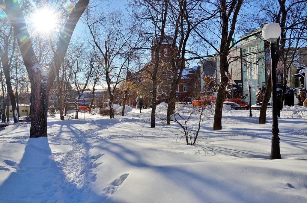 Синоптик: «Температурная пила» ждет Москву ко Дню защитника Отечества